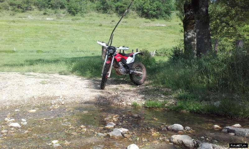 montesa 4 ride - Page 5 15075663151