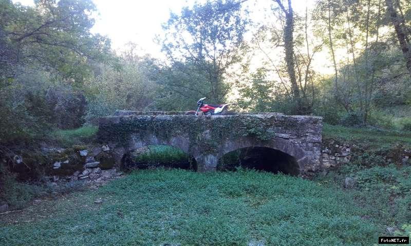 montesa 4 ride - Page 5 15075663941